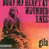 Bury My Heart At Wounded Knee/GILA